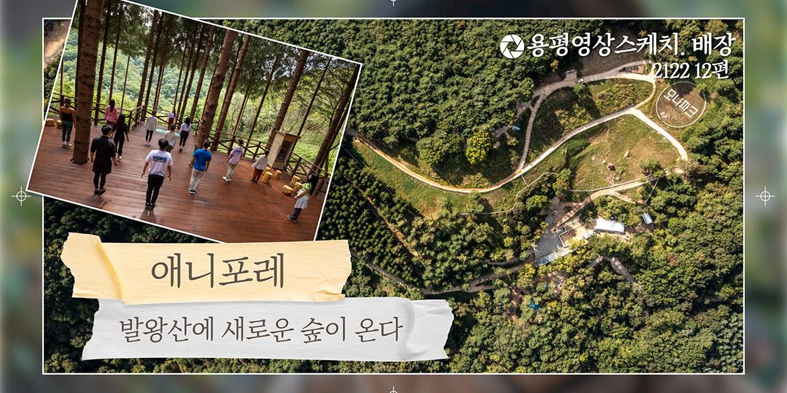 애니포레 _ 발왕산 모나파크 용평영상. 배장 2122 57편