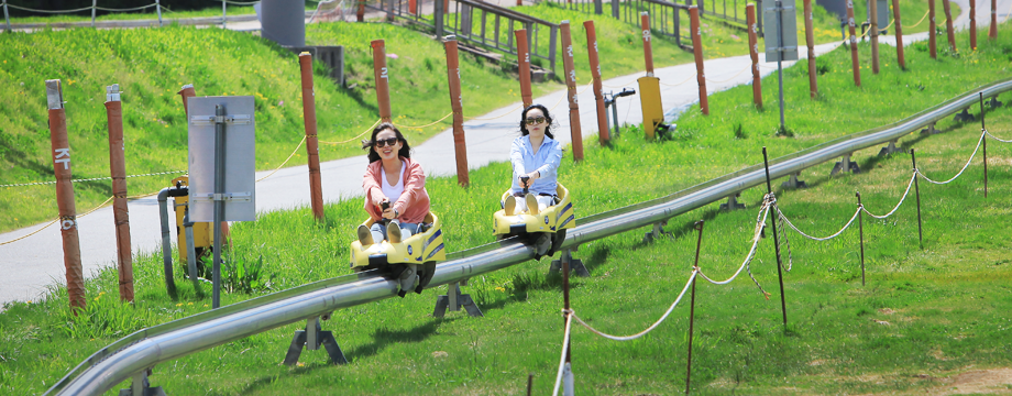 Image of Mountain Coaster