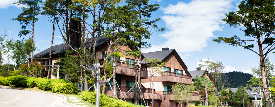 Image of Forest Condominium View