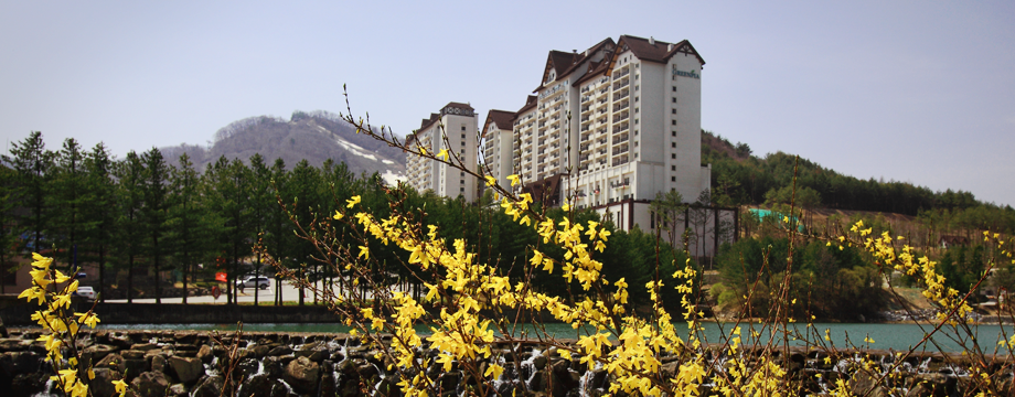 Image of Yongpyong Resort