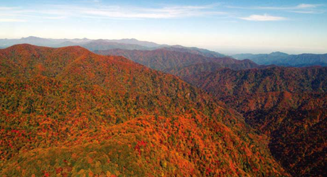 Image of Mt. Oh-Dae National Park