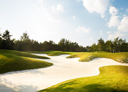 Image of Yongpyong birchhill Golf Club