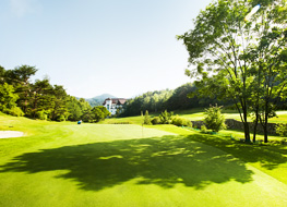 Image of Yongpyong 9 Golf Club